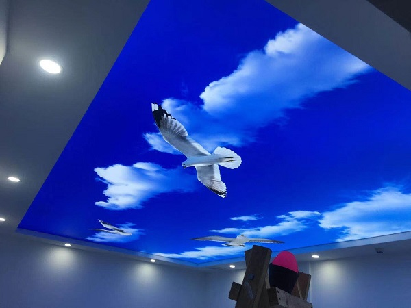 digital print ceiling film